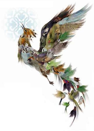 پرندگان در شعر حافظ